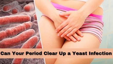 Photo of Can Your Period Clear Up a Yeast Infection – Get Rid of Yeast Infection